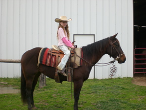 cutting horse training
