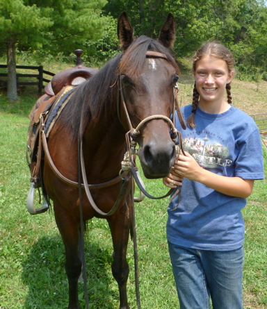 ranch broke quarter horse gelding for sale