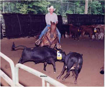 Team Penning Working cowhorse