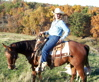 Ranch horse gelding bridleless riding quarter horse
